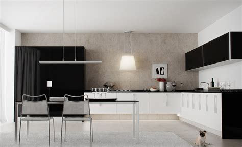 Black And White Kitchen Cabinets Pictures by Black White Kitchen Interior Design Ideas