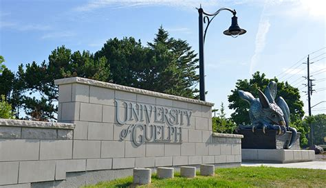 a python is on the loose at the university of guelph z103 5