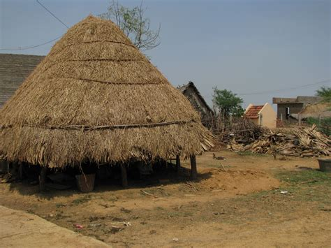 Thatched Hut File India Rural 01 Typical Thatched Animal