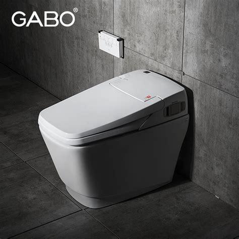 Toilet Built In Bidet by Bathroom Ceramic Smart Toilets With Built In Bidet Buy