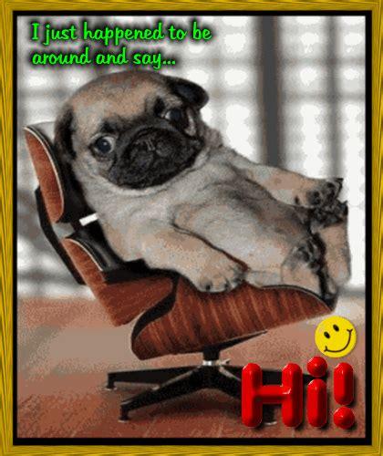 pug e card doggonegreetings ecards for pug happy birthday pug ecards nl designer