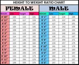 Normal Table Height What Is The Normal Weight For My Height Questions And