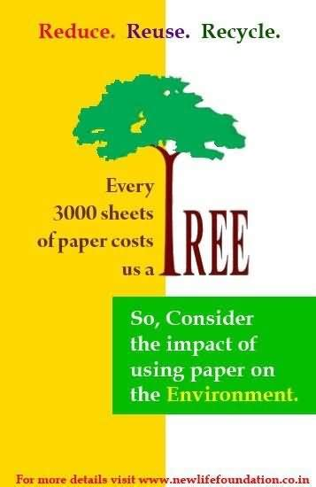 How Many Pieces Of Paper Can A Tree Make - every 3000 sheets of paper costs us tree tree quote