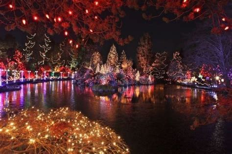 christmas lights on the lake pictures photos and images