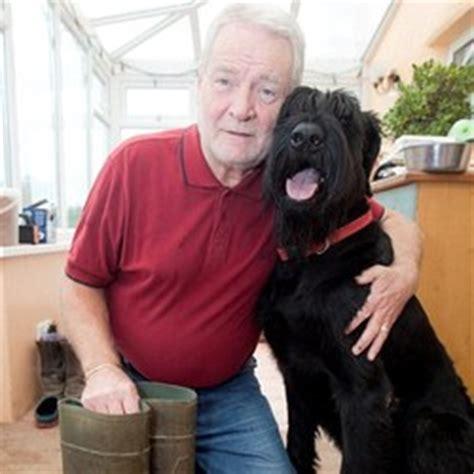chien sauve maitre de foudre