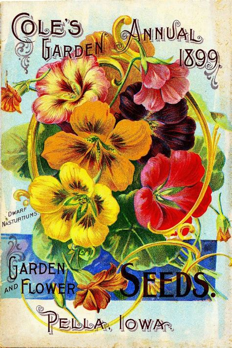 coles garden vintage flowers seed packet catalogue