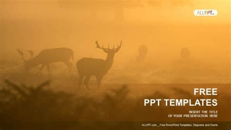 deer in the mist powerpoint templates