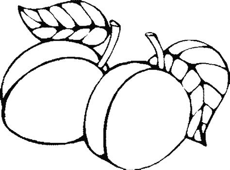 Fruit Coloring Pages 1 Coloring Pages Of Oranges