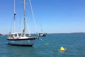 boat mooring moreton bay boat mooring invention helps save south east qld s dugongs