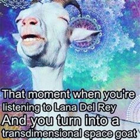 Meme Lana Del Rey - 1000 images about music on pinterest lana del rey