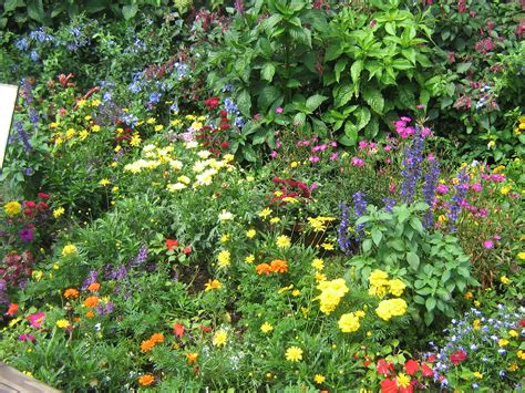 Butterfly Garden Flowers Quot Fresh From Florida Quot Weekend At Epcot Draws Crowds Fresh From Florida