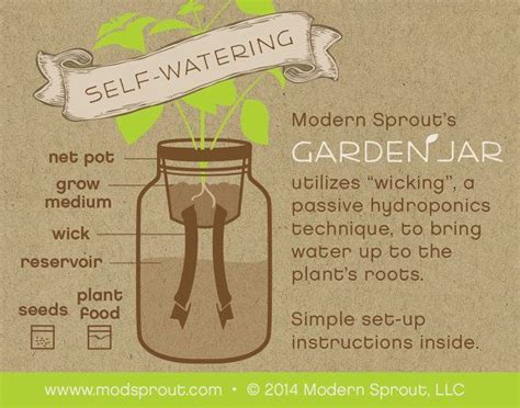 diy self watering herb garden jar herb kit self watering planter for growing