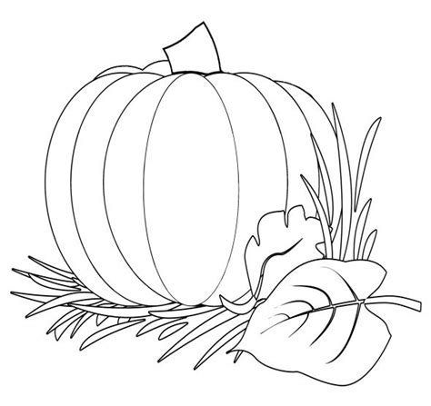 thanksgiving pumpkins coloring pages pumpkin harvest coloring image coloring pages adults and