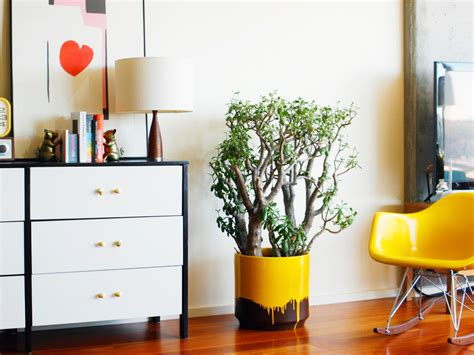 6 modern planters you can diy this weekend freshome