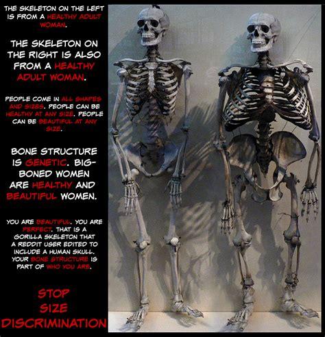big bones the about big bones fatlogic