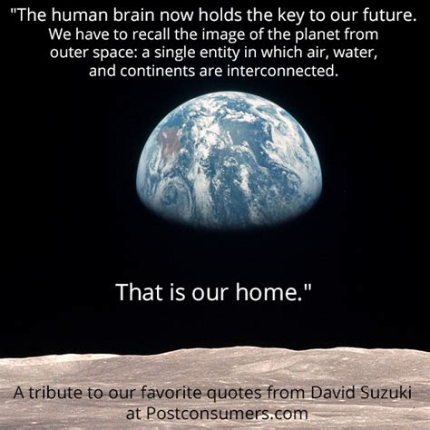 natural resources hold the key to indias future daily favorite david suzuki quotes the human brain postconsumers