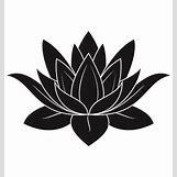 Lotus Flower Black And White Drawing | 380 x 400 jpeg 562kB