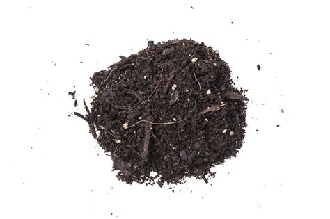 the peat atarian diet for those of us with average iqs peat moss good for plants but bad for the planet eco