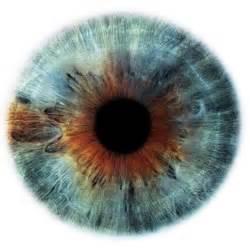 human eye color you my eye on