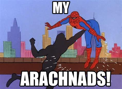1960s Spiderman Meme - spider man animated memes