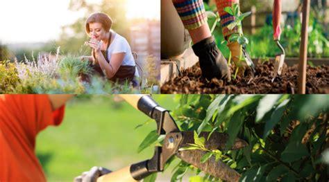 quanto costa un giardiniere all ora lavori domestici archivi di cronoshare