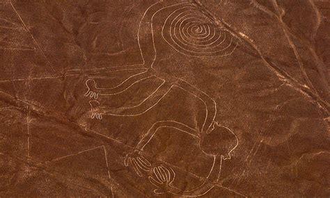 figure lines the enigmatic nazca lines peru trip advisors