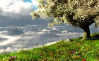 Spring Landscape Spring Landscape Wallpaper Hd Desktop Wallpaper