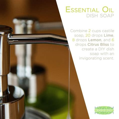 8 Essential Products All Should Own by 53 Best Essential All Cleaning Products Images