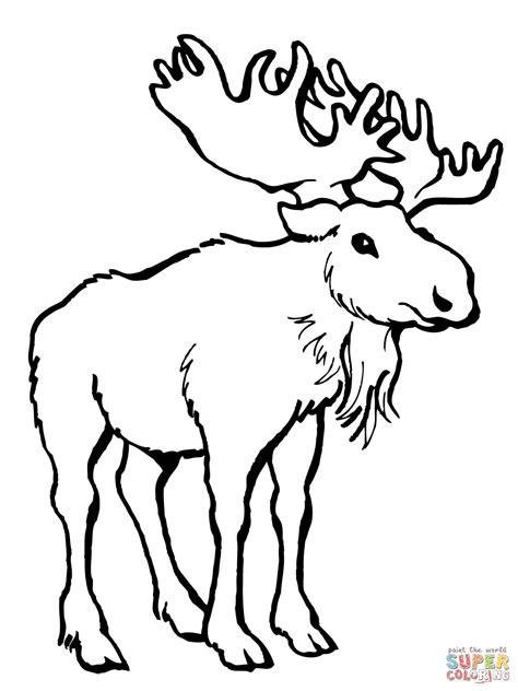 winter deer coloring pages disegno di alce da colorare disegni da colorare e