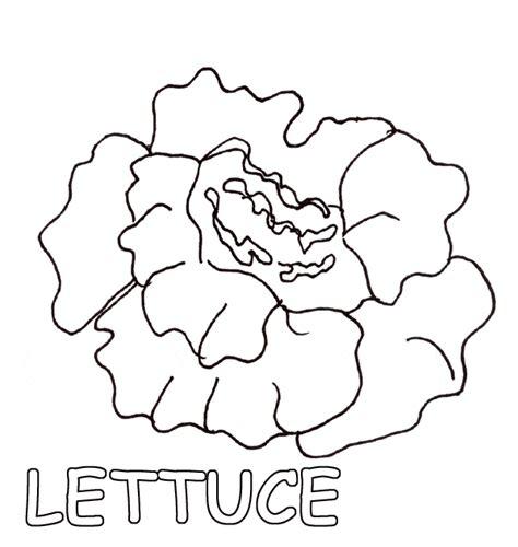 color the lettuce theme food group pinterest lettuce