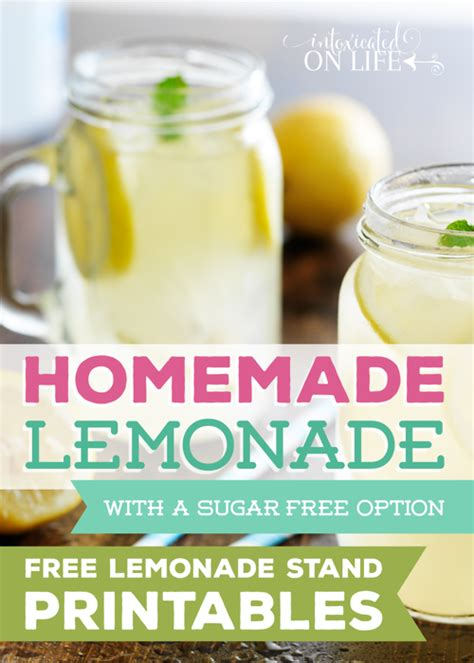 lessons from a lemonade stand an unconventional guide to government books lemonade with a sugar free option and free