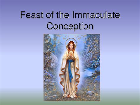 the feast of the opinions on feast of the immaculate conception