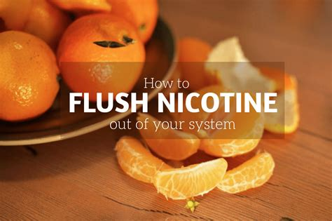 Detox Nicotine Out Of Your System by How To Get Nicotine Out Of Your System Naturally
