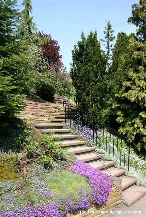 backyard hillside landscaping ideas 32 best images about steep slope ideas on pinterest