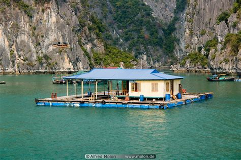 boat house by the bay boat houses in bay picture people and house boats halong