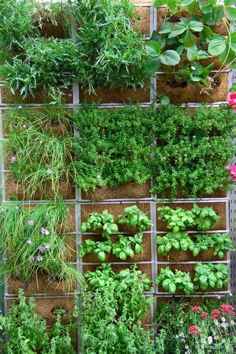 Vertikalno vrtnarjenje za kreativne   Bodi eko