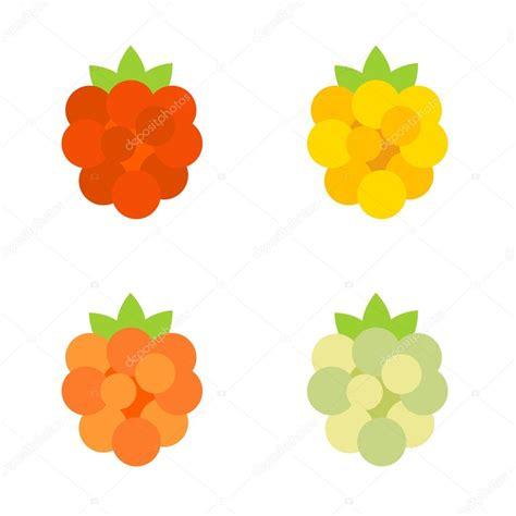 Raspberry Colorful colorful raspberry icon stock vector 169 virulaine 87504734