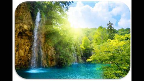 imagenes educativas sobre medio ambiente imagenes de medio ambiente youtube