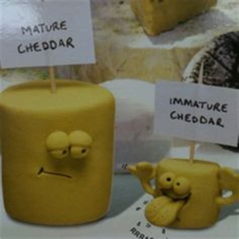cheese puns images hilarious funny stuff