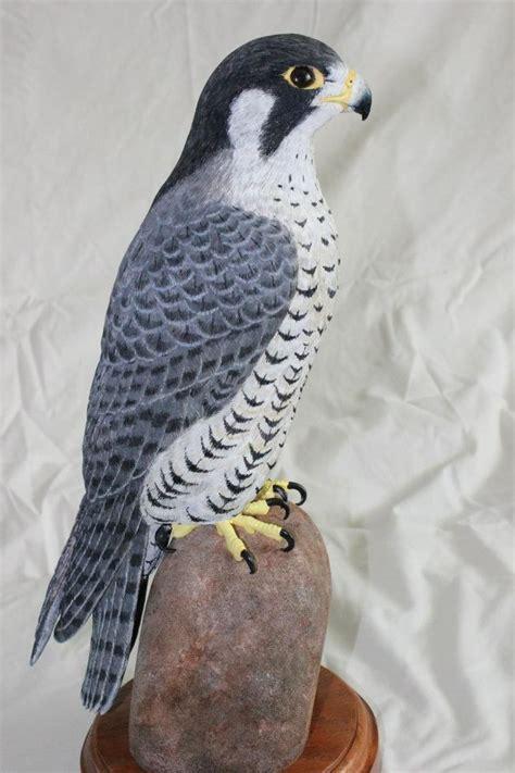 peregrine falcon tattoo designs pin peregrine falcon tattoos on