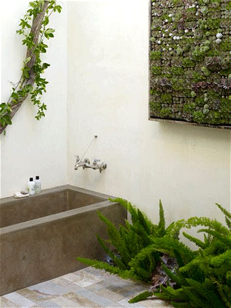 Shower Plants by Plants For A Luxurious Bathroom Tao Big City Small Apartment