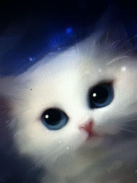 magic cat magic cat cats
