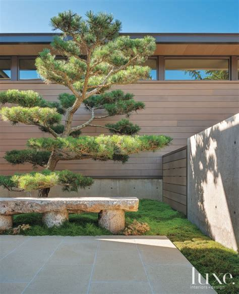 zen garden 27 photos home decor 11401 pines blvd 134 best pinus thunbergii images on pinterest japanese