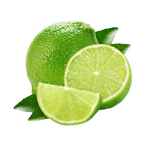 imagenes en png de frutas frutas y verduras terrados c 237 tricos