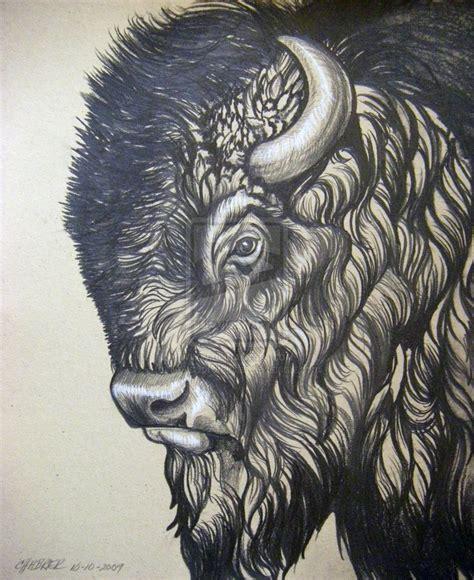 buffalo head tattoo bison drawing