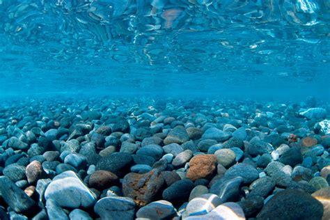 background aquarium aquarium page 1