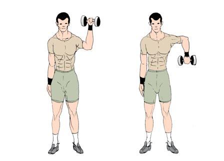 shoulder warm up for bench press warm up for shoulders bodybuilding com forums