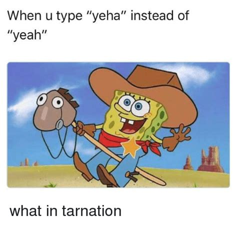 search  memes  meme