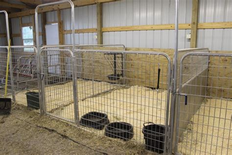 open area for future stalls 8 stall horse barn with kilkenny miniature horses mares