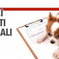 ufficio tutela animali torino uffici diritti animali una rivoluzione nei comuni